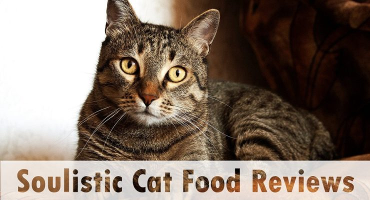 Soulistic Cat Food Reviews